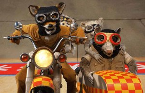 fantastic-mr-fox-23-10